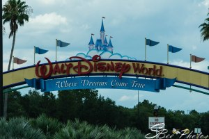 WDW Entry Sign